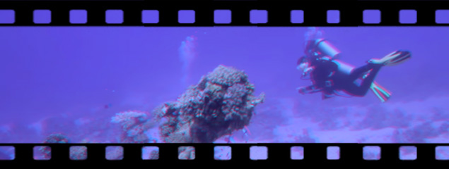 Under the Red Sea – 3D