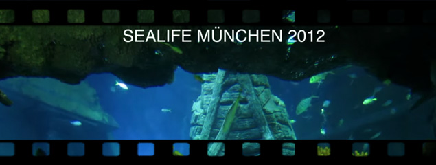 Sea Life München 2012 – Test Canon Powershot S100