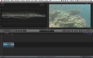 Unterwasservideo ohne Korrektur der Kontraste