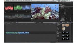 Farbkorrektur von Unterwasservideos: Film unter Wasser richtige Farbe