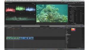 Farbkorrektur von Unterwasservideos: Video unter Wasser bearbeiten