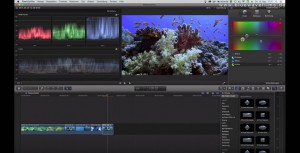Farbkorrektur von Unterwasservideos: Weißabgleich Final Cut X Bordmittel