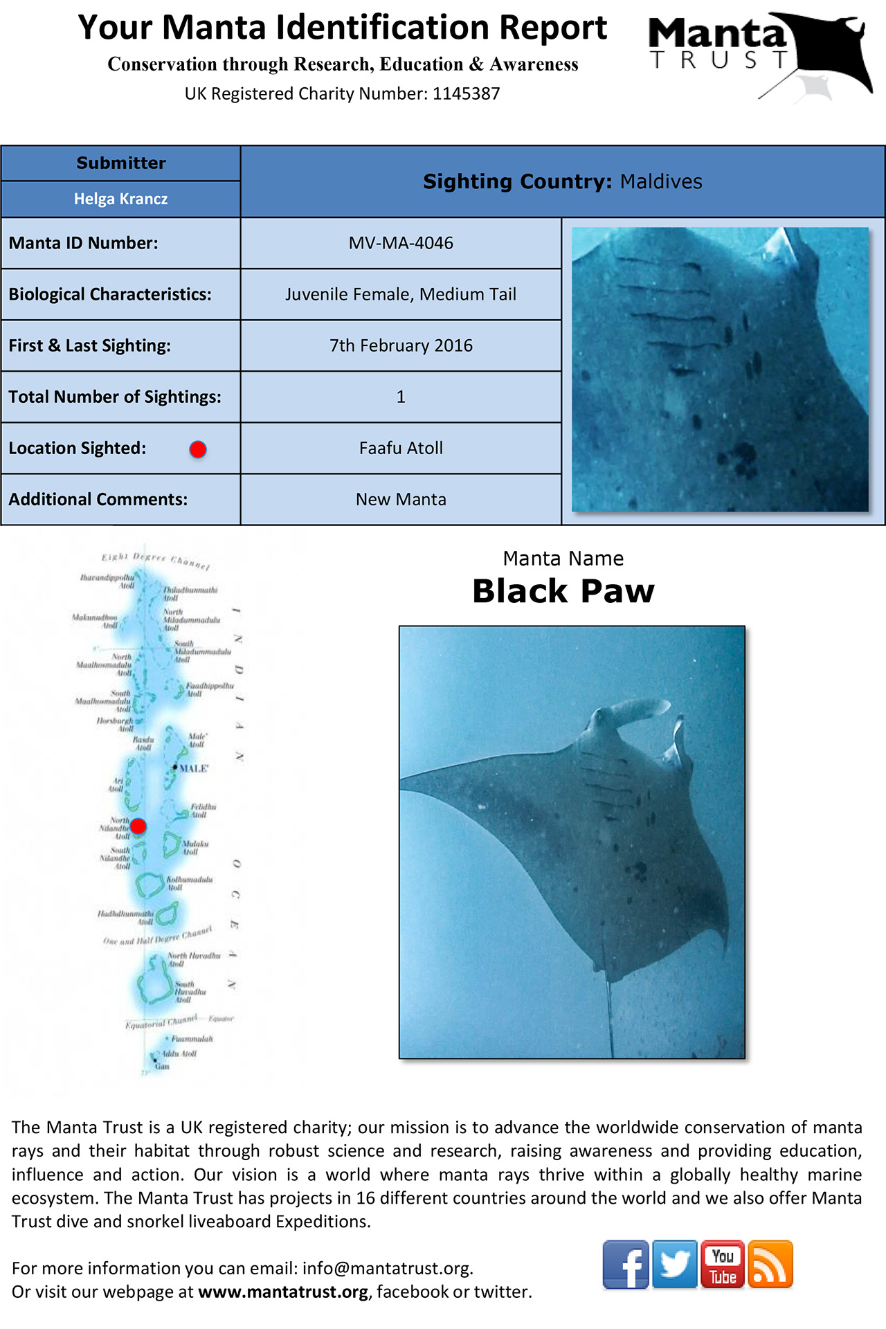 Black Paw - The Manta Trust