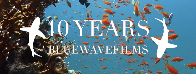 10 JAHRE BLUEWAVEFILMS